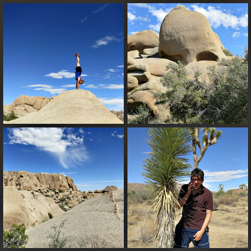 Joshua Tree Adventures: Handstands, Skull Rock, Pricks!