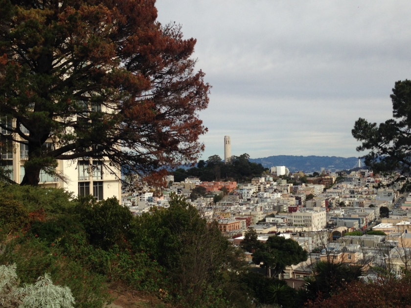 Idyllic hilltop view of the Coit Tower, at Taylor and Vallejo Streets (Ina Coolbrith Park).