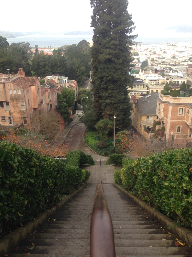 Looking down from the Lyon Street Stairs.